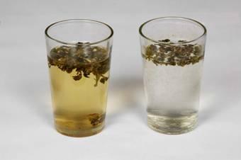 能量水杯 冷水泡茶实验